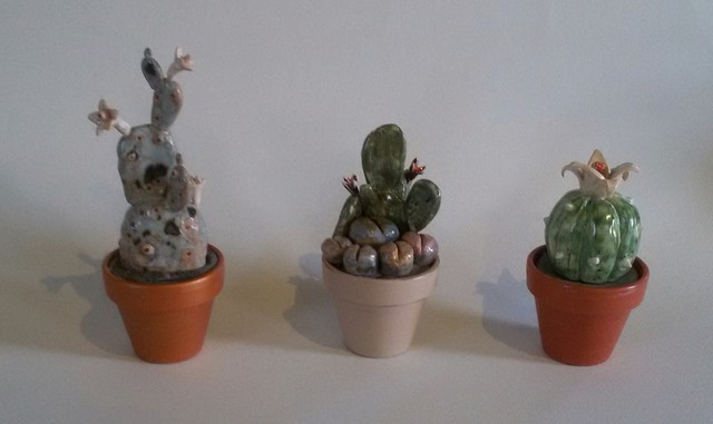 Kaktusėliai